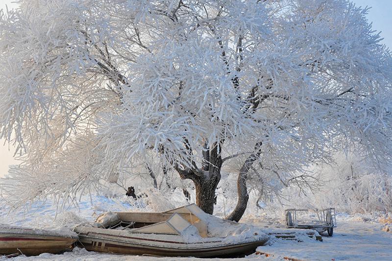 三九寒冬即将来临 南方过冬有电暖器�