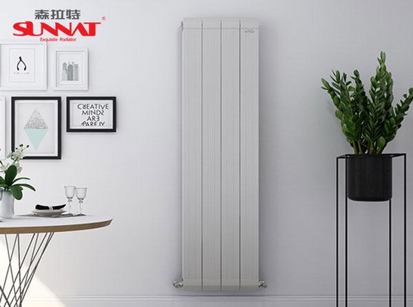 客厅暖气片应该装在哪里